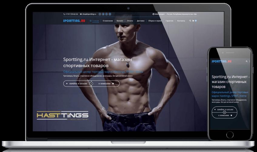 Создание интернет магазина спортивных товаров